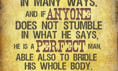 For we all stumble in many ways. And if anyone does not stumble in what he says, he is a perfect man, able also to bridle his whole body.