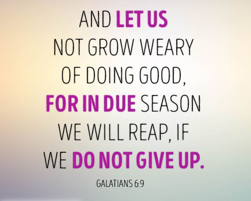And let us not grow weary of doing good, for in due season we will reap, if we do not give up
