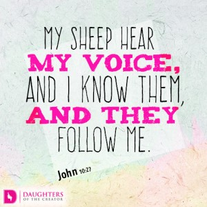 My sheep hear my voice, and I know them, and they follow me