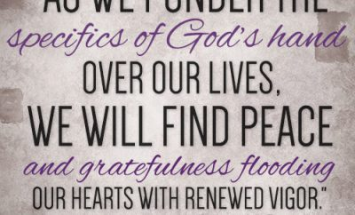 As we ponder the specifics of God's hand over our lives, we will find peace and gratefulness flooding our hearts with renewed vigor