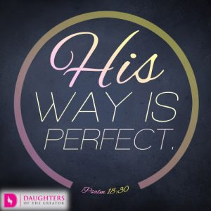 His way is perfect.