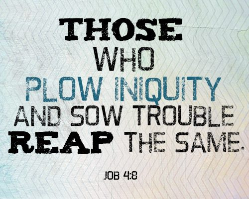 Those who plow iniquity and sow trouble reap the same.