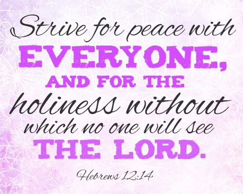 Strive for peace with everyone, and for the holiness without which no one will see the Lord