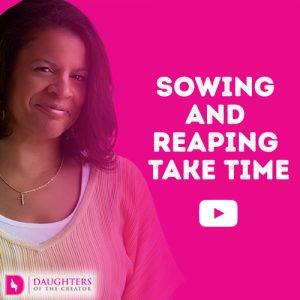Video Blog - Sowing and Reaping Take Time