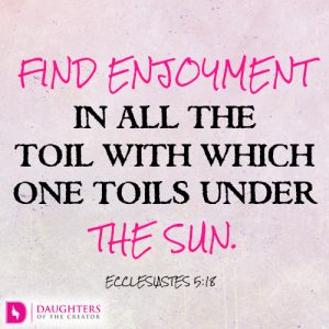 Find enjoyment in all the toil with which one toils under the sun